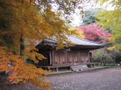 富貴寺2009 1