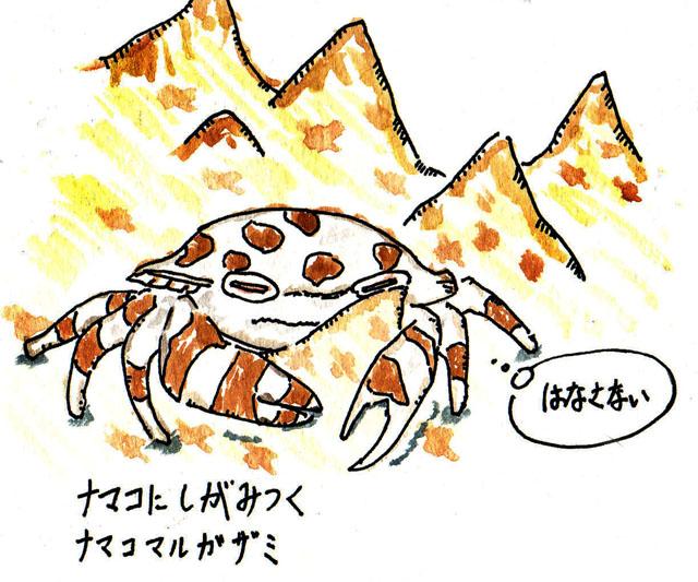 20090530_20_ロボ系哀愁属_ナマコマルガザミ