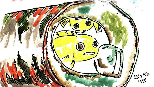 2009_22_在宅系アイ属ミジンベニハゼ2匹.jpg