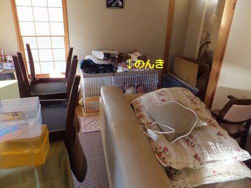 2011121703.jpg