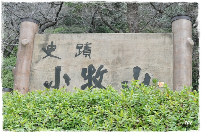 2011 02 27_6372