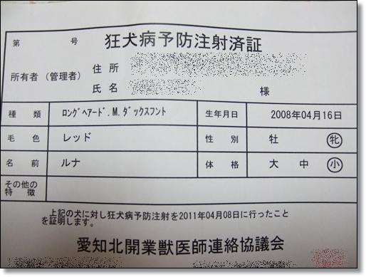 2011 04 09_0090