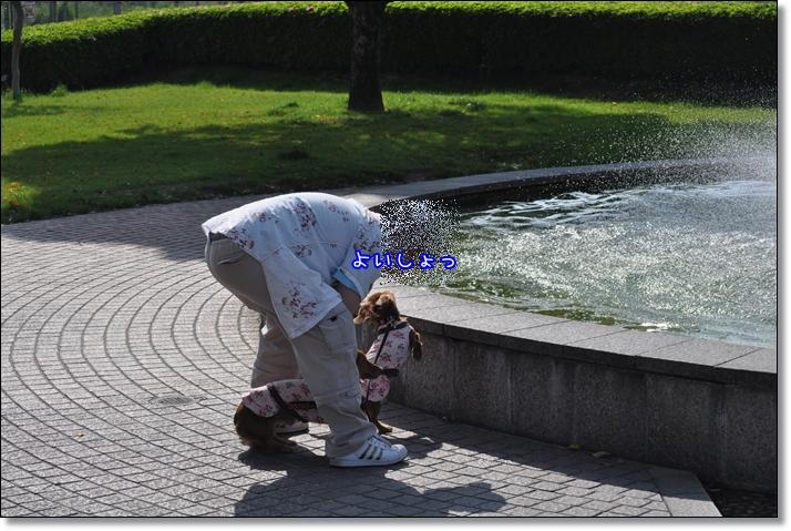 2011 05 09_3034