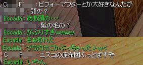 06032810.jpg