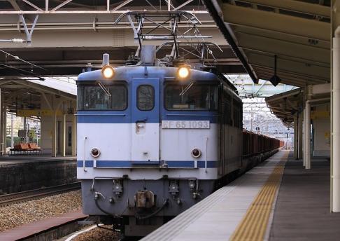 2011 3 21 カモレ 9