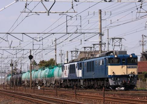 2011 3 29 カモレ 1