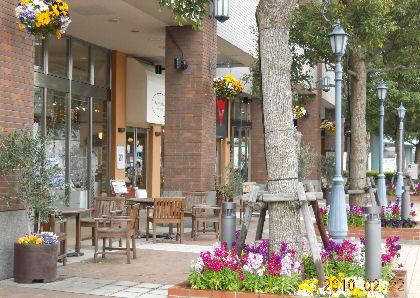 yokohama5_20100223215741.jpg