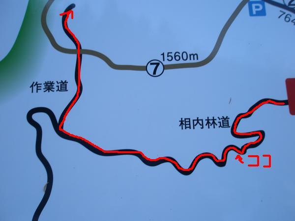 095 ⑦の登山道ではなく、相内林道であった(笑2