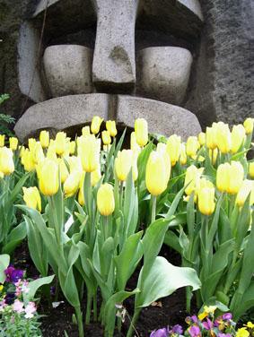 08310渋谷モヤイ像と_1