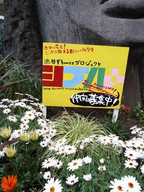 08426モヤイ像の花壇_3