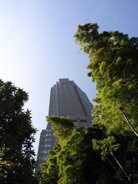 08104渋谷R0016682