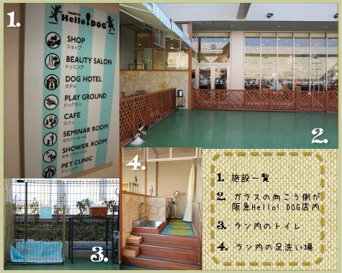 124-2_20081205220447.jpg