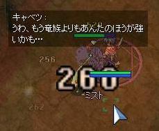 20050306182147.jpg