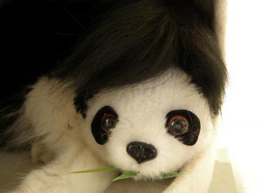 くり子とパンダ1
