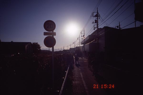 081121tiarara3.jpg