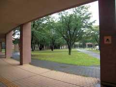 東京外国語大学見学