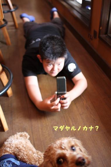 カメラマンまある