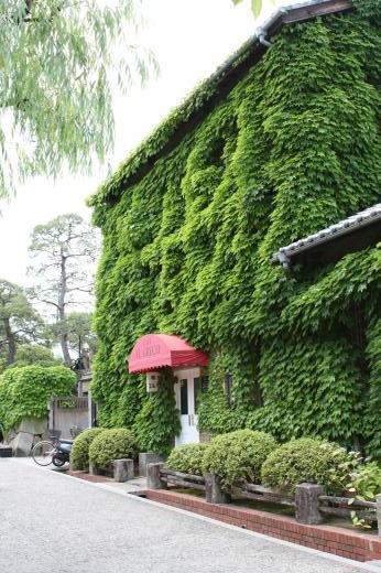 蔦の喫茶店