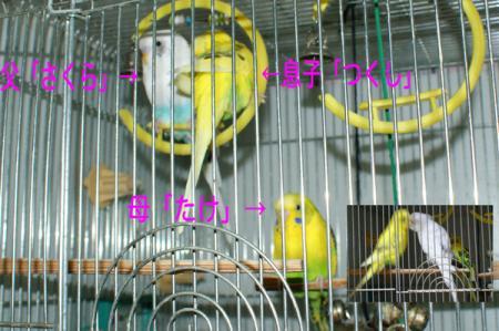 1_20090221075449.jpg