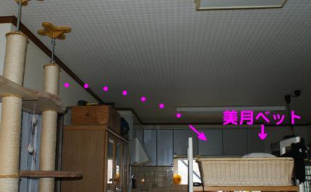 1_20090406101021.jpg