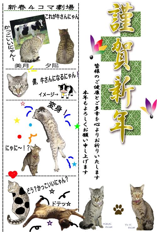 nenga_20081231081411.jpg