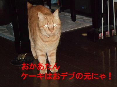 2008_12030013 (2)