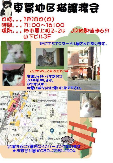 20081223020014.jpg