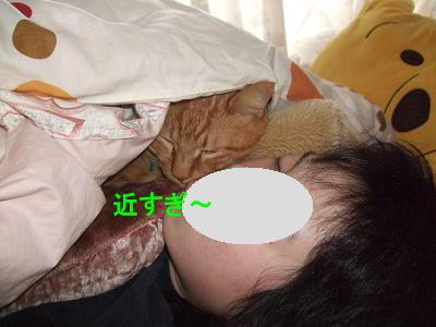 2009_03230077.jpg