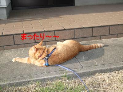 2009_05130012.jpg