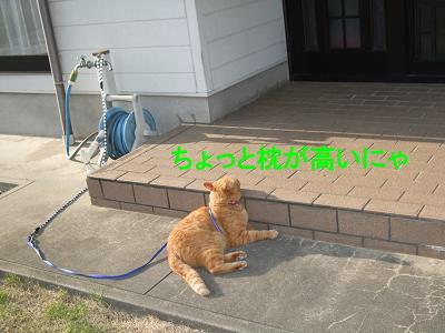 2009_05130014.jpg