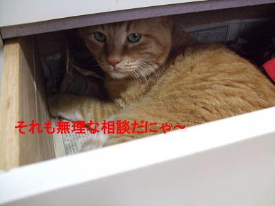 2009_05260005.jpg