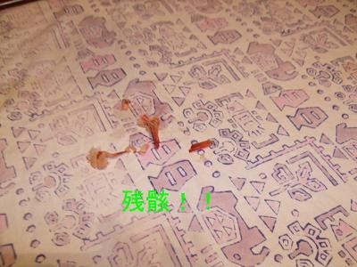 2009_07090017.jpg