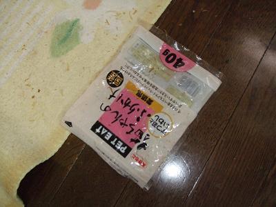 2009_09240002.jpg