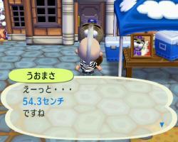 0117-1_convert_20090118180739.jpg