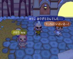 2101253_convert_20090126201343.jpg