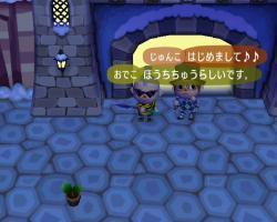 210126-3_convert_20090127210748.jpg
