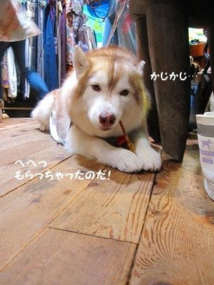 IMG_8640new.jpg