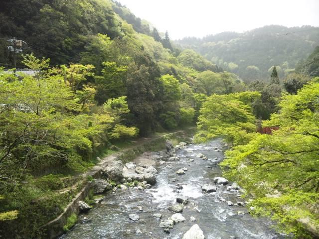 110502_1038 清滝川