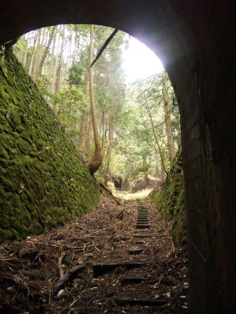 110502_1059 第1トンネル6