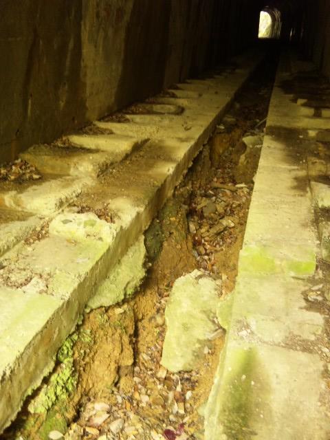 110502_1054 第1トンネル3