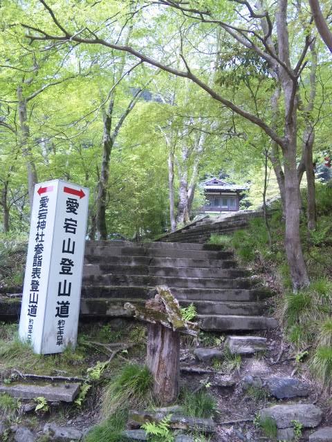 110502_1038登山道