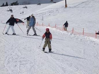 スキースベリ