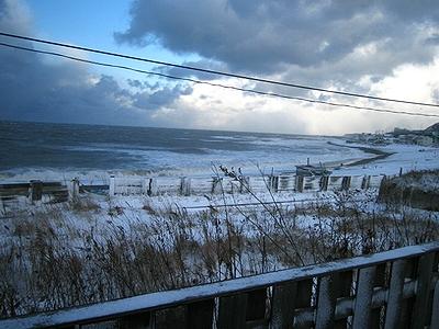 朝の風景 2008/11/20