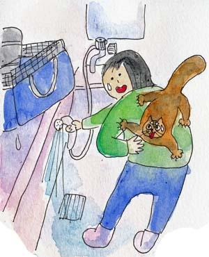 猫膀胱炎6