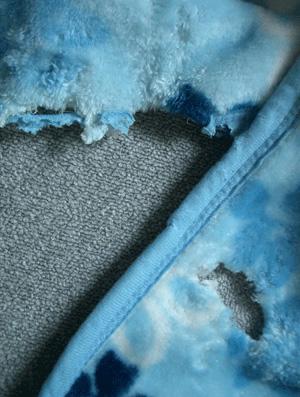 毛布も穴のコピー