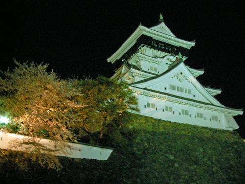 小倉城さくら