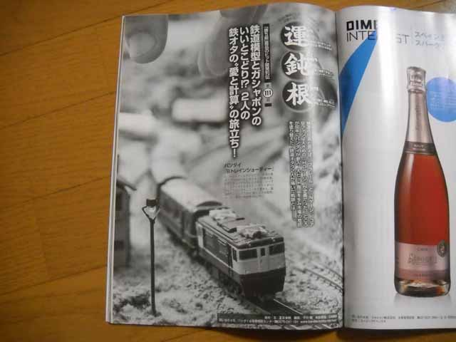 DSCN1243a.jpg