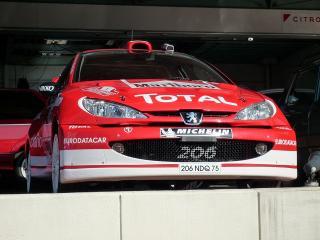プジョー206 WRC仕様