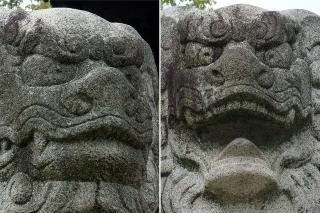 稲荷神社の狛犬