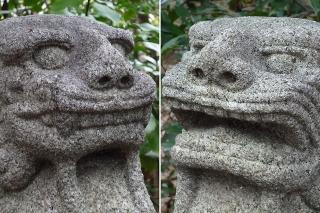 護国神社の狛犬